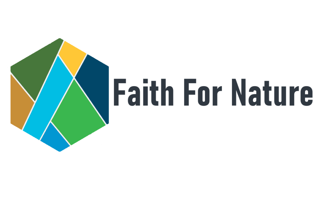 08.26.2020. Launch of the Faith for Earth website